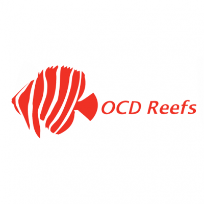 ocd-reefs-logo-thegem-person